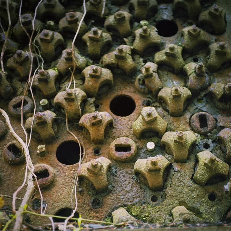Holes for Peeping 1 - resize.jpg