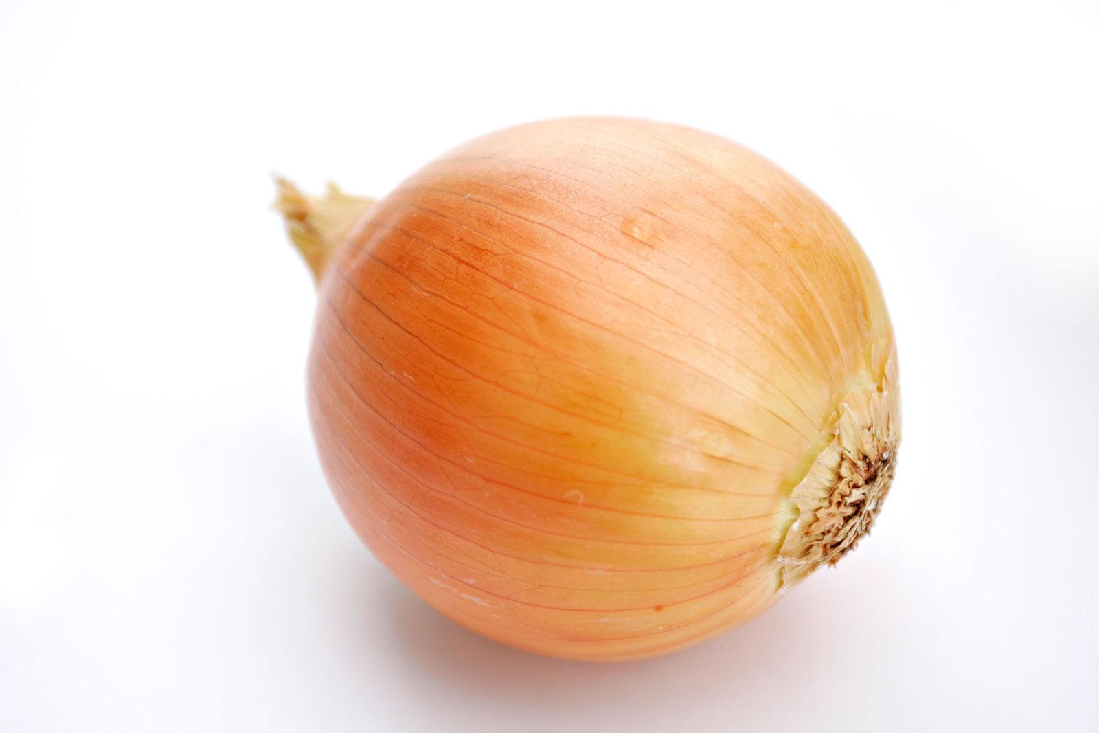 Onion_white_background.jpg
