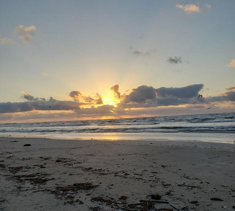 Sunrise by the sea, during a coastal women's retreat. Photograph credit: Michelle Garza.