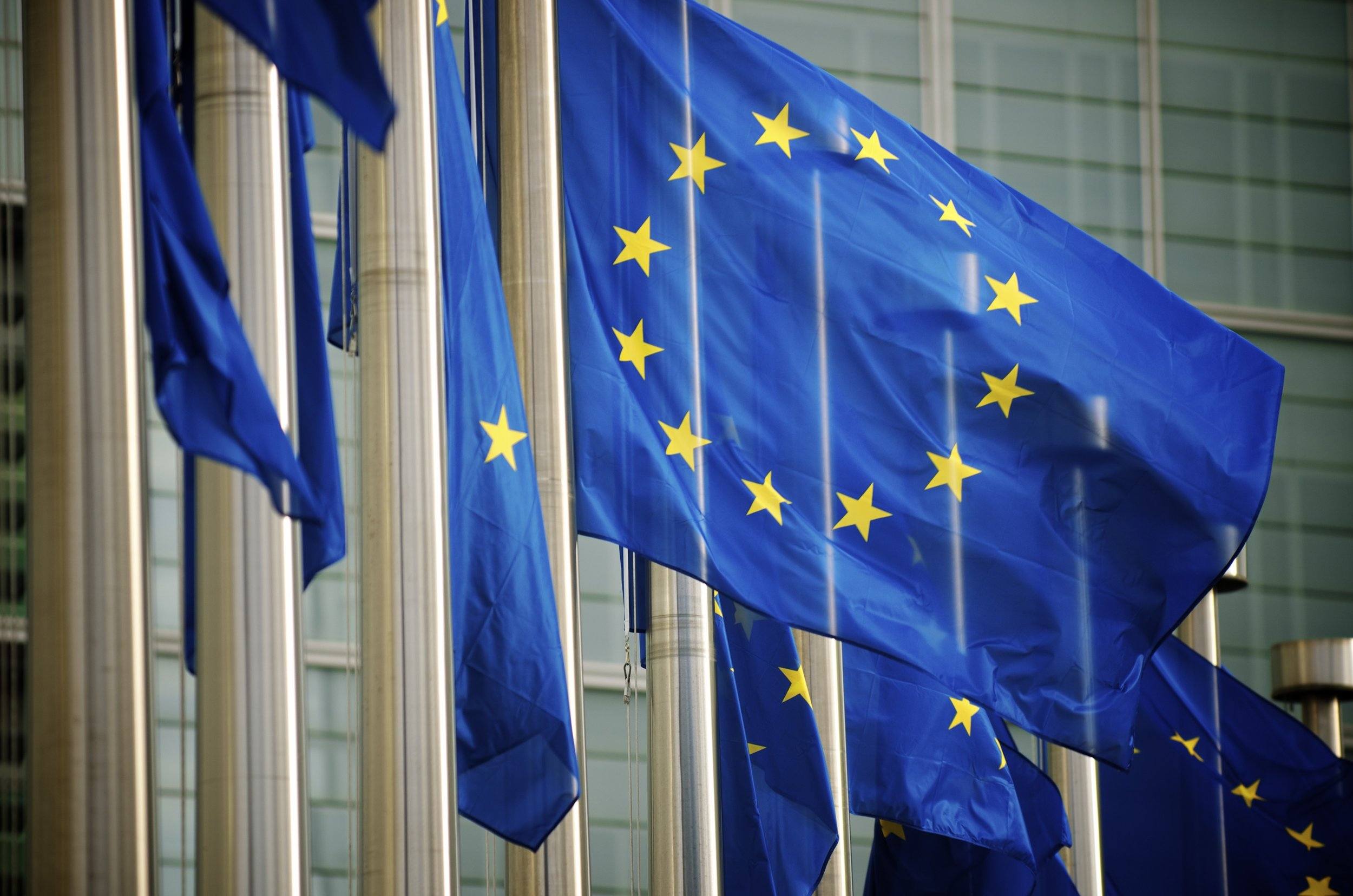 EU-Flags_Brussels.jpg