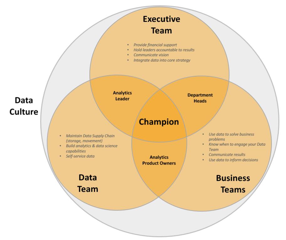 Data culture roles