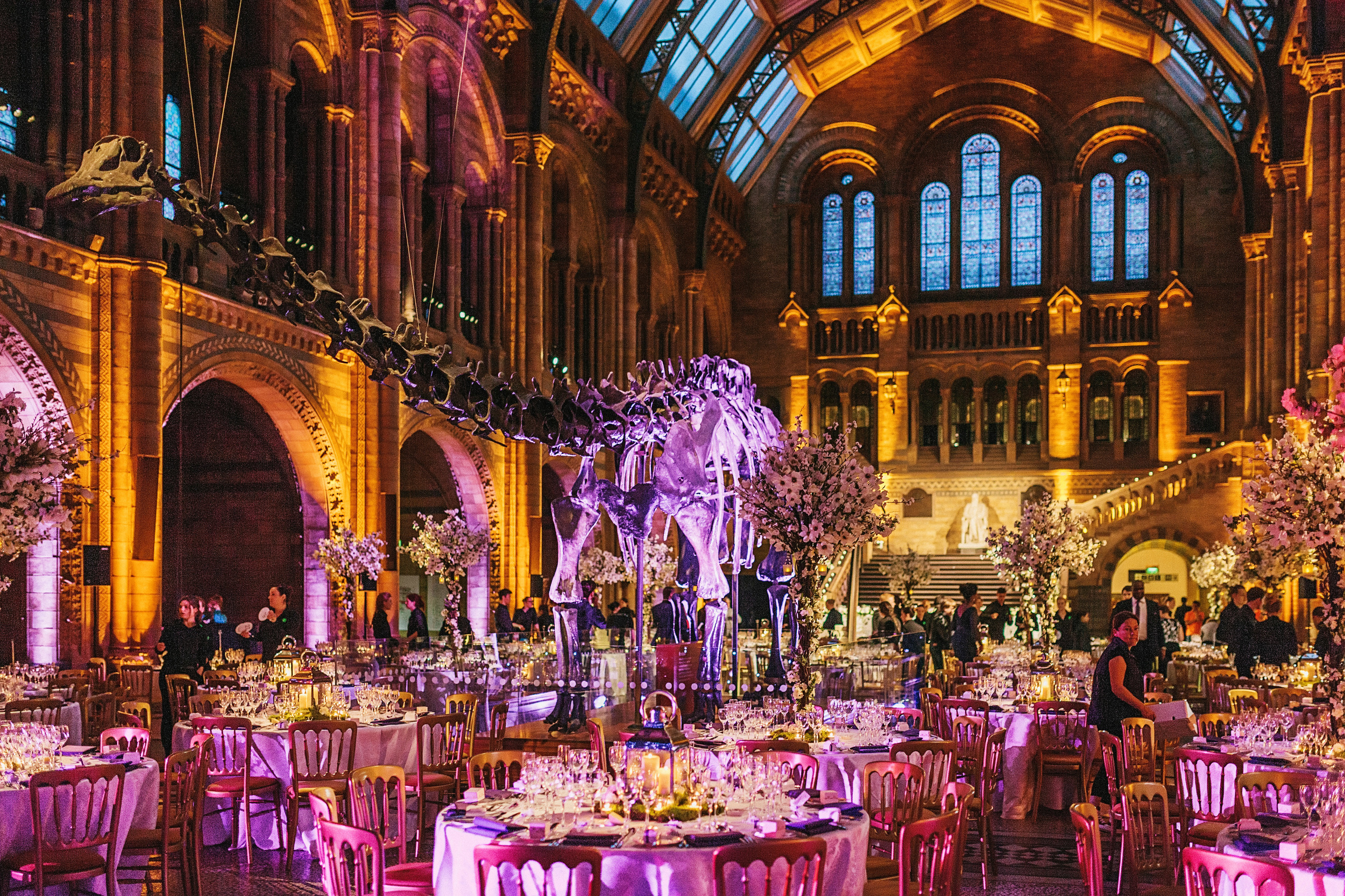 Wedding Videography Still - The Great Hall in The Natural History Museum