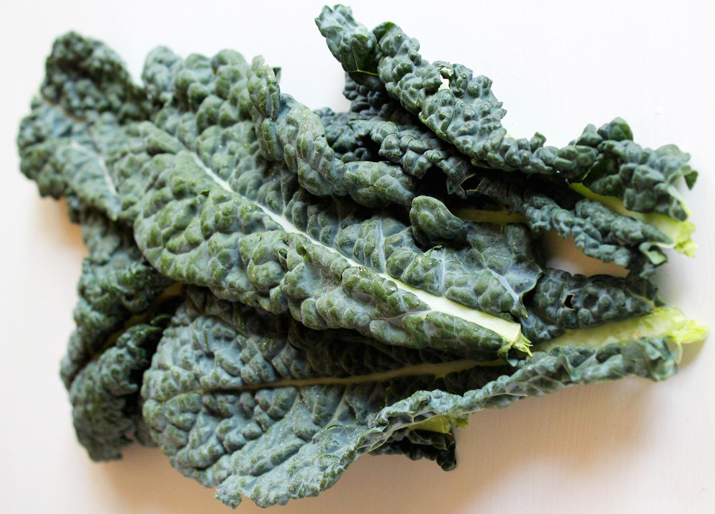 fresh kale_model4greenliving.jpg