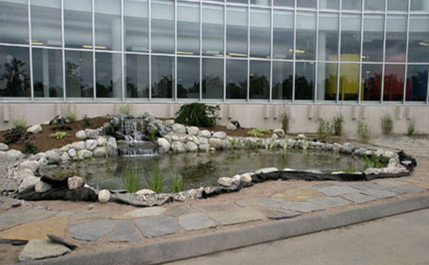 Springfield-pond-without-men.jpg