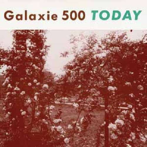 Gal1xie 500 Today.jpg