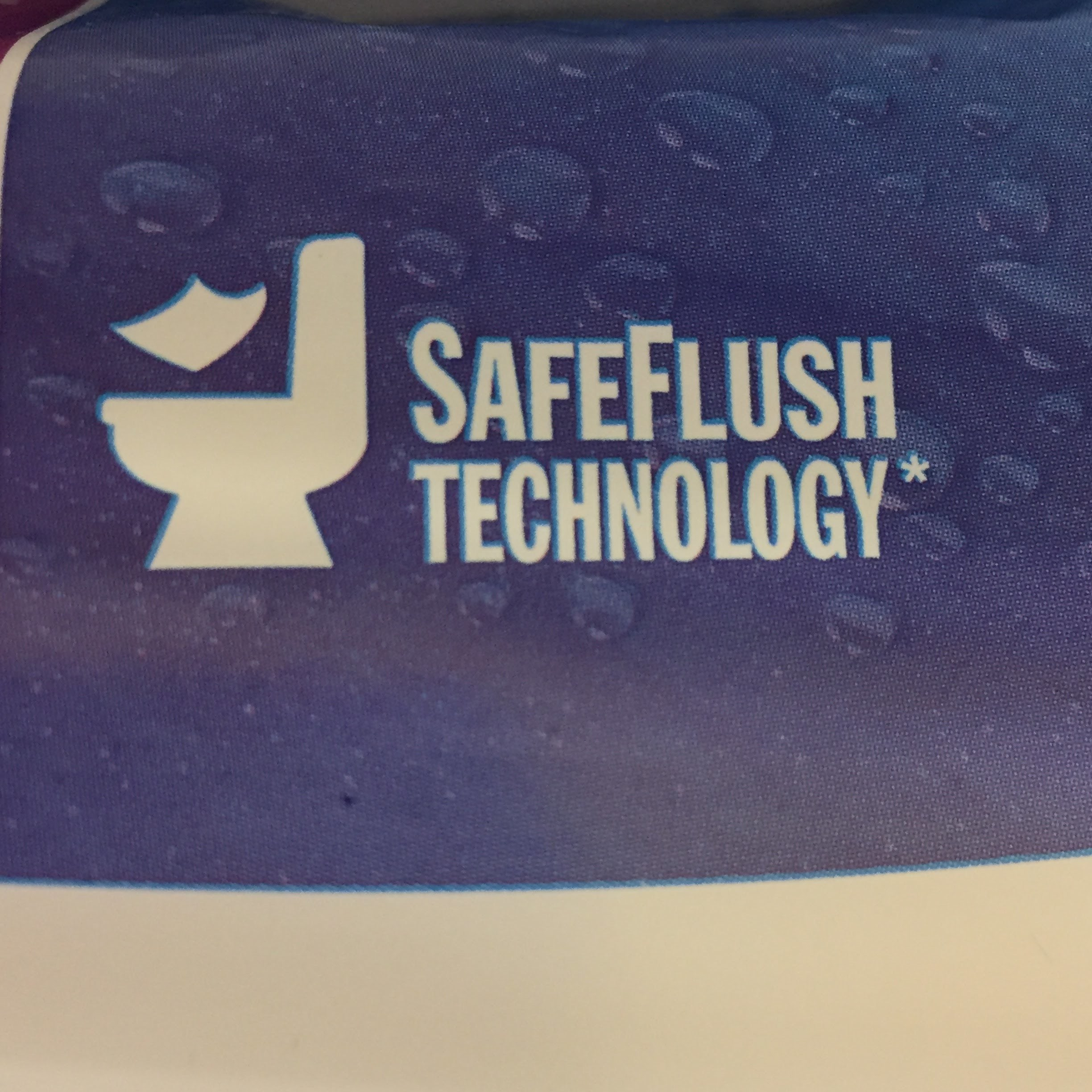 safe flush technology.JPG