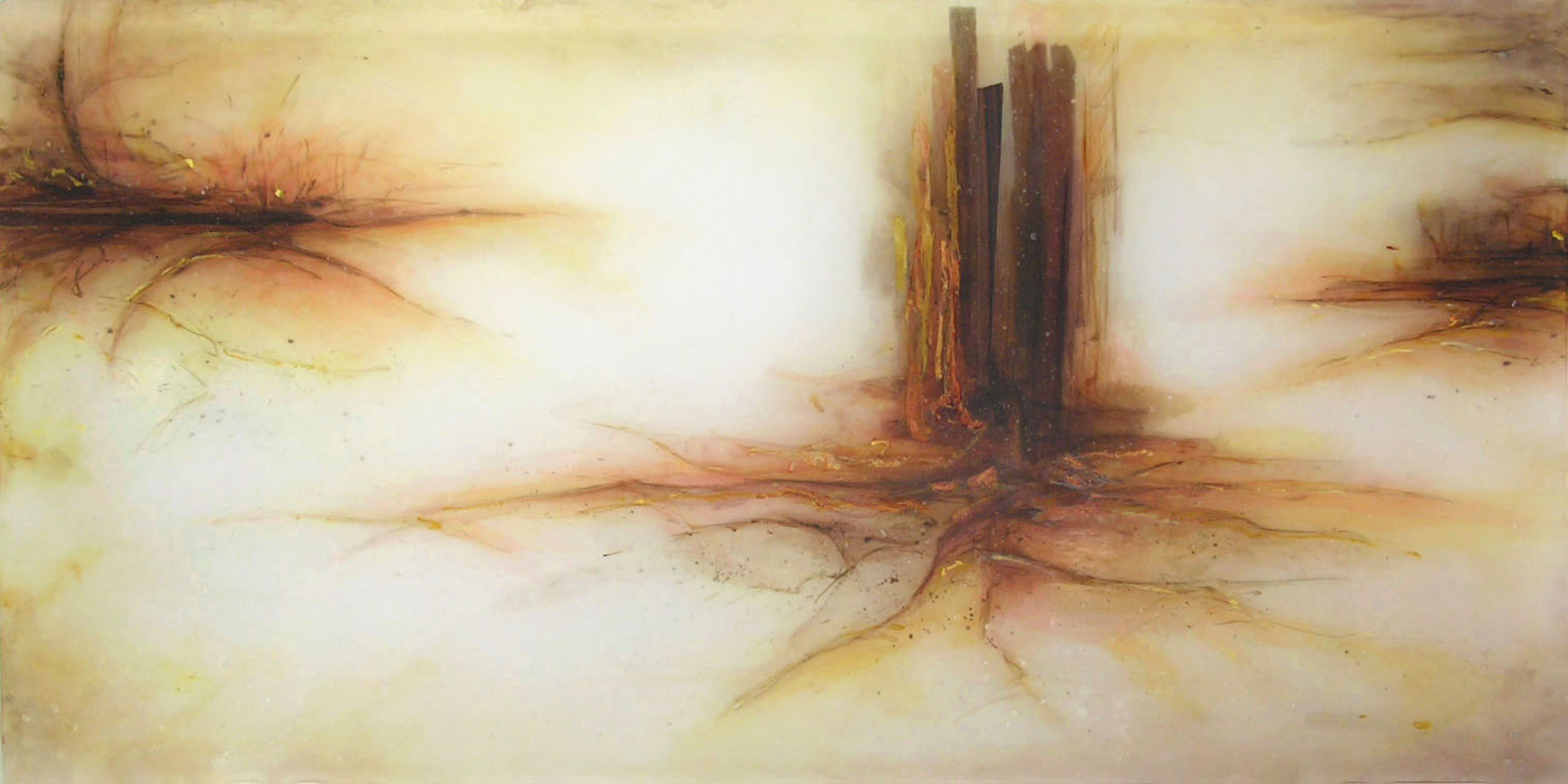 Long and Far , 2005  Oil paint, acrylic, rosewood, and prismacolor on plexi 30 x 54 x 1 inches