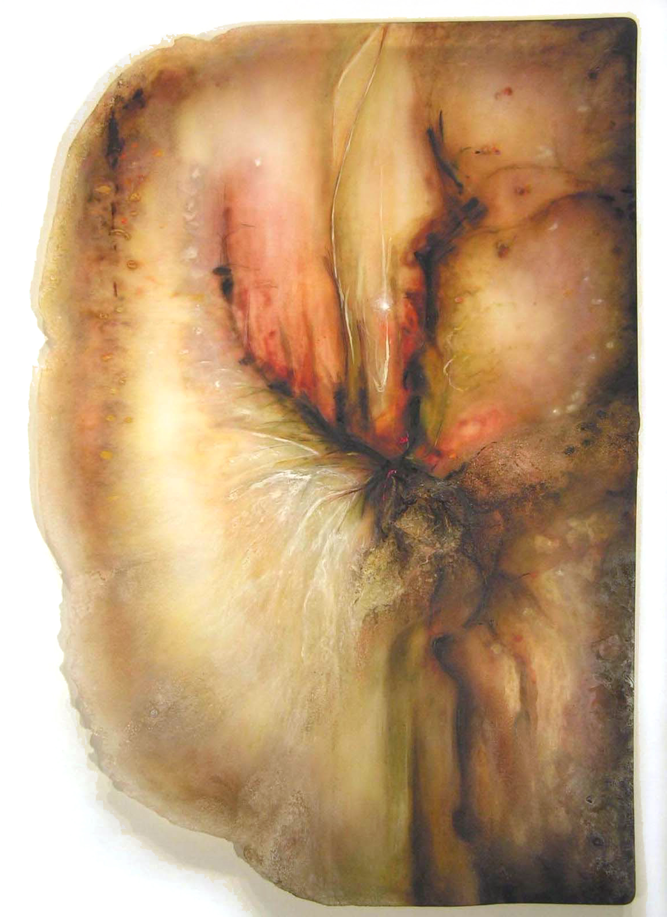 Hems a Light, Not Fading,  2005  Oil paint, oil bar, acrylic, and prismacolor on plexi 38 x 29 x 1 inches
