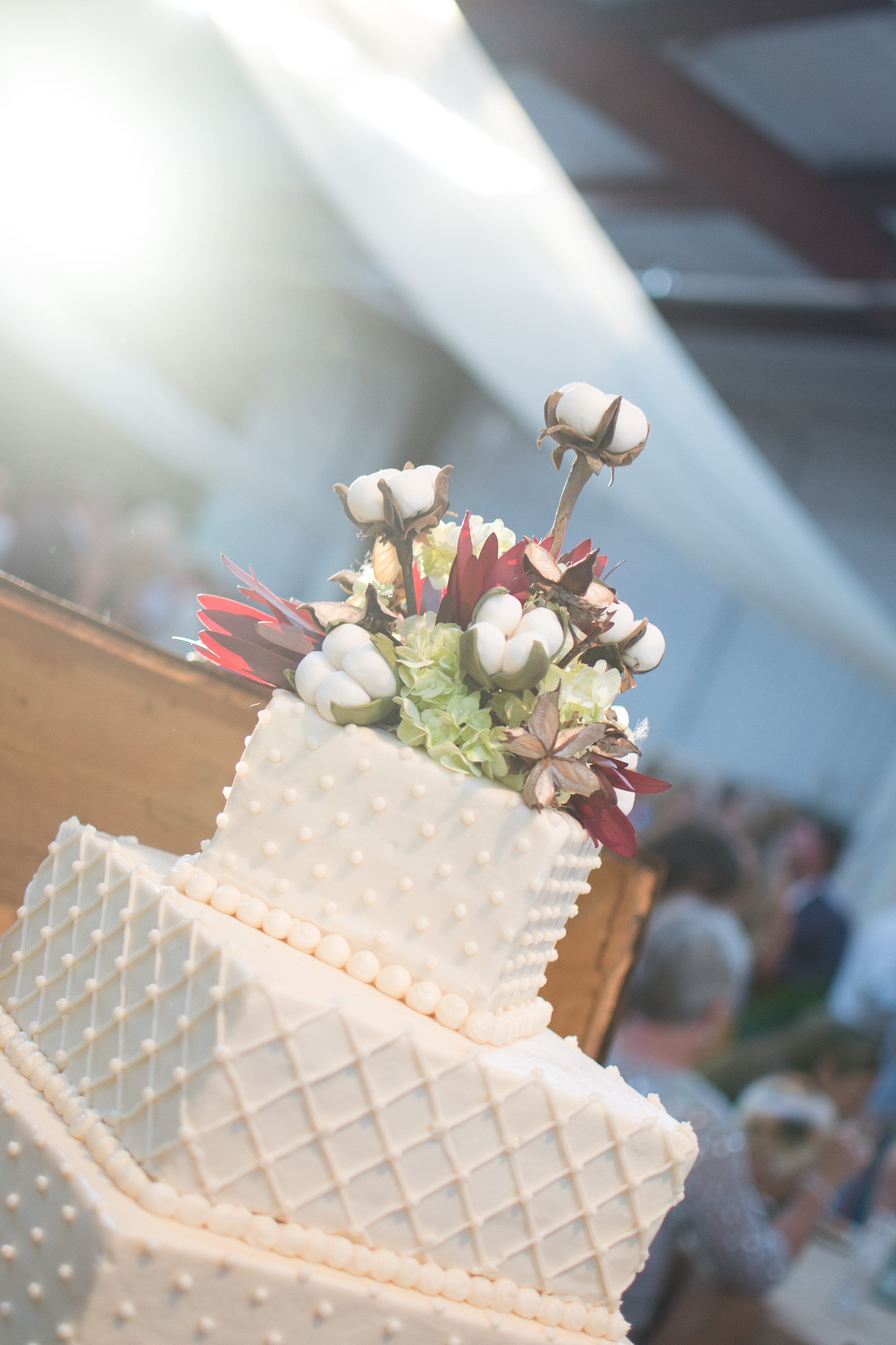 Pryor wedding and Hopkins 098.jpg