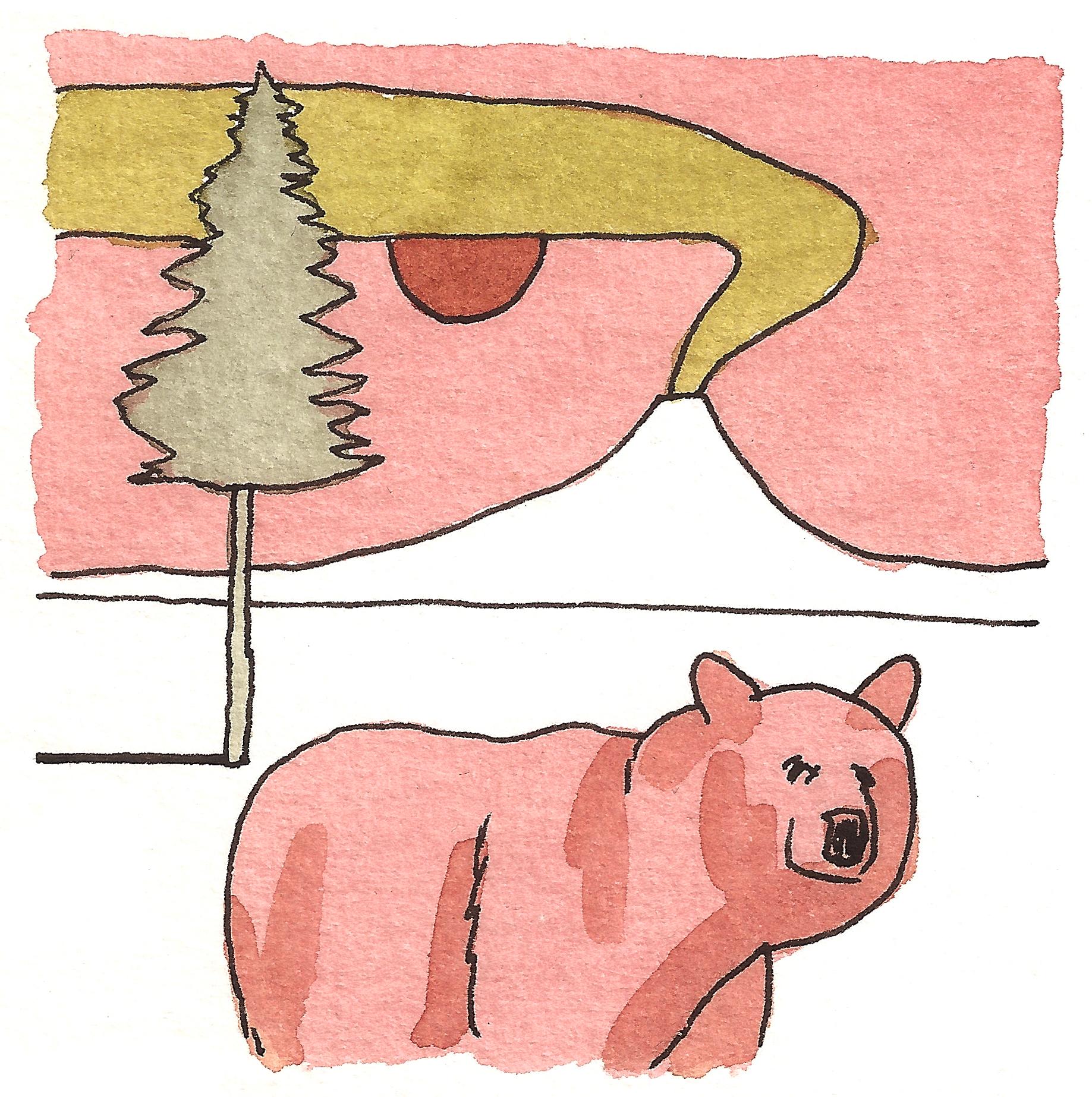 'Volcano Landscape- Bear'