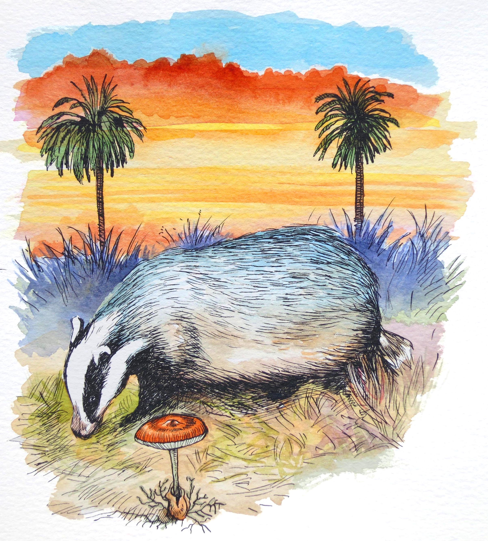 'Yorkshire Badger'