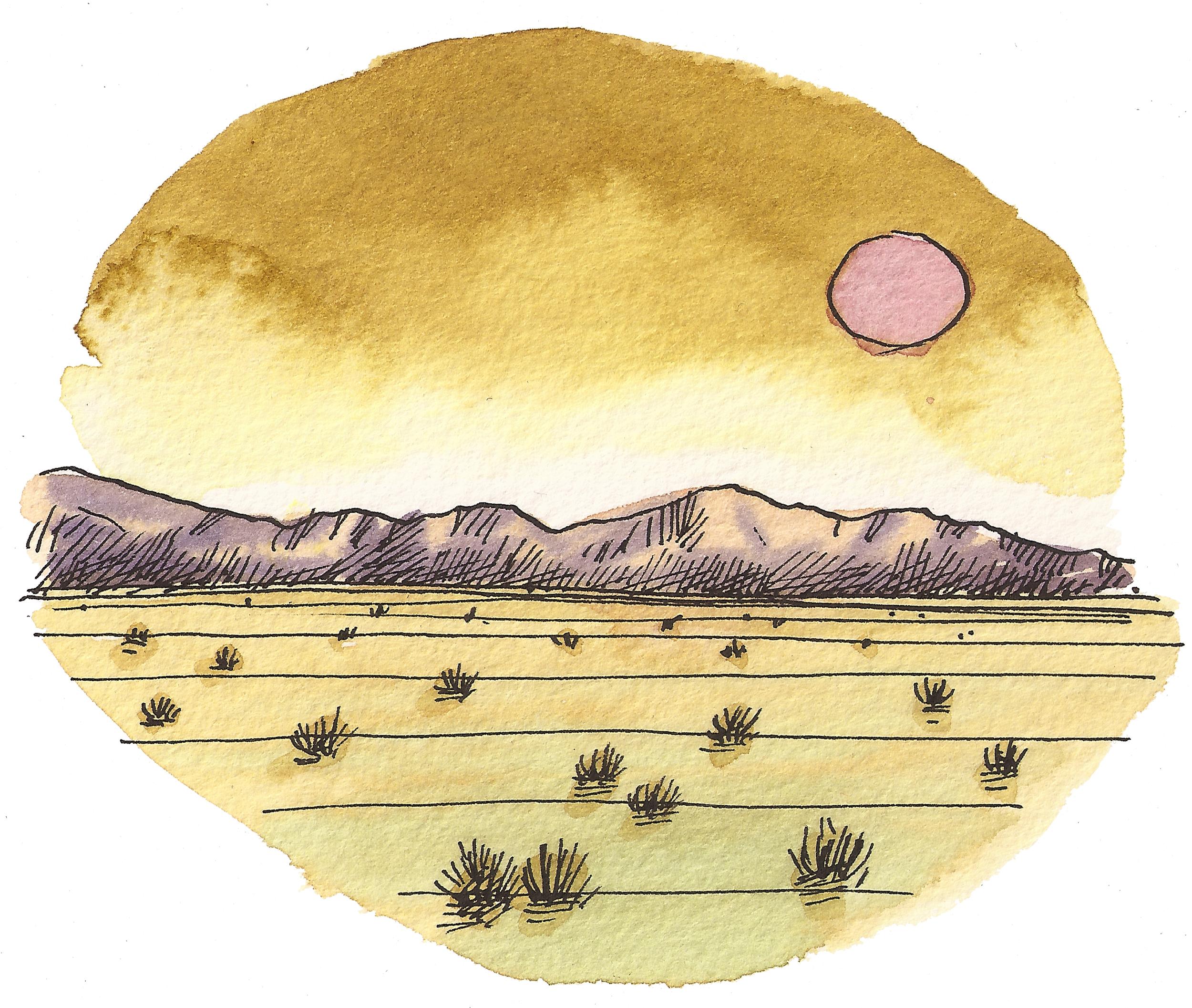 'Desert Sunset lll'