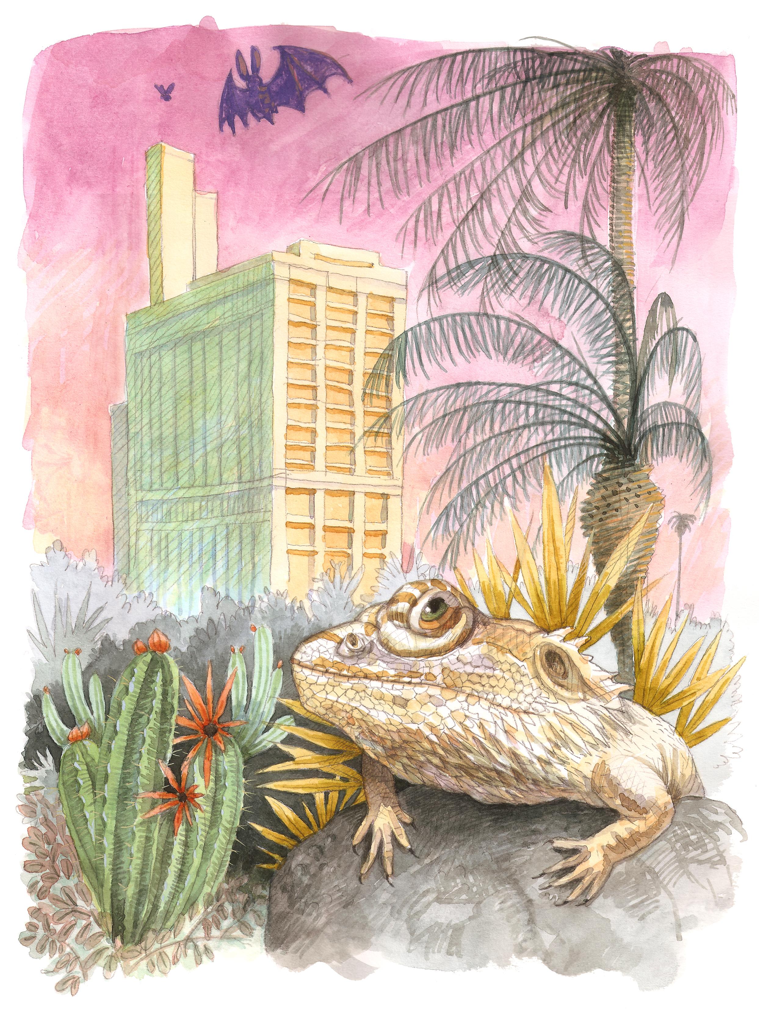 'Reptile v Mammal'