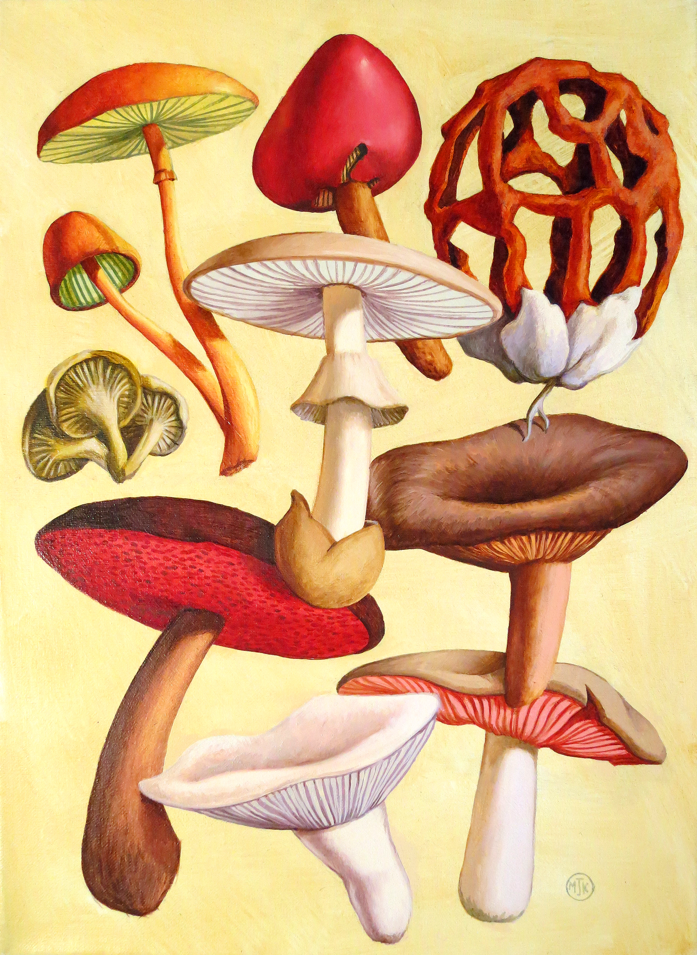 'Poisonous Fungi ll'