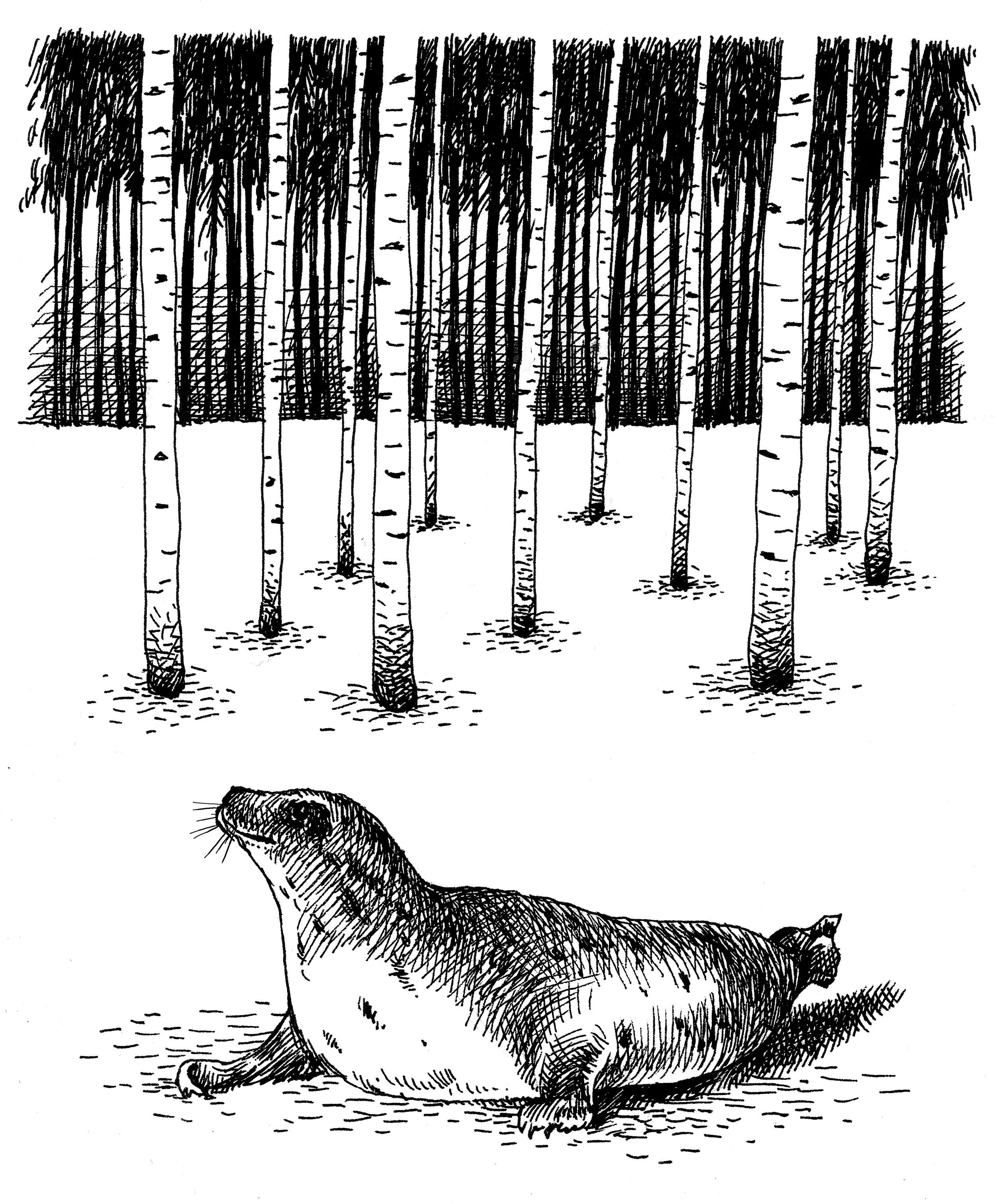 'The Last Seal'