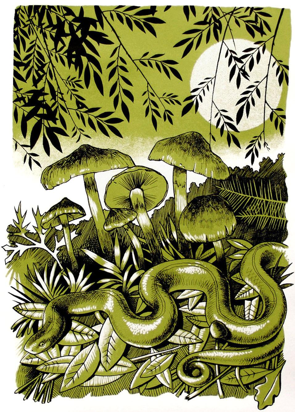 'The Last Snake'