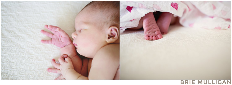 Brie-Mulligan-Lifestyle-Family-and-Newborn-Photographer-Brooklyn-NYC-NJ_0253.jpg