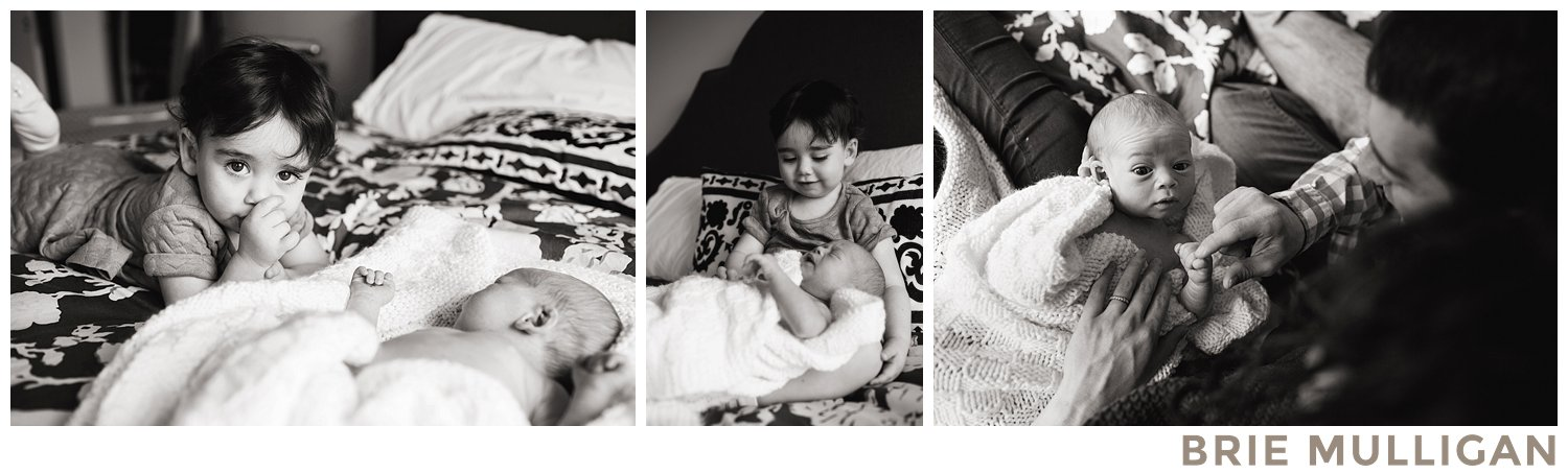 Brie-Mulligan-Family-and-Newborn-Photographer-Montclair-New-Jersey-Northern-NJ-Essex-County-and-NYC_0162.jpg