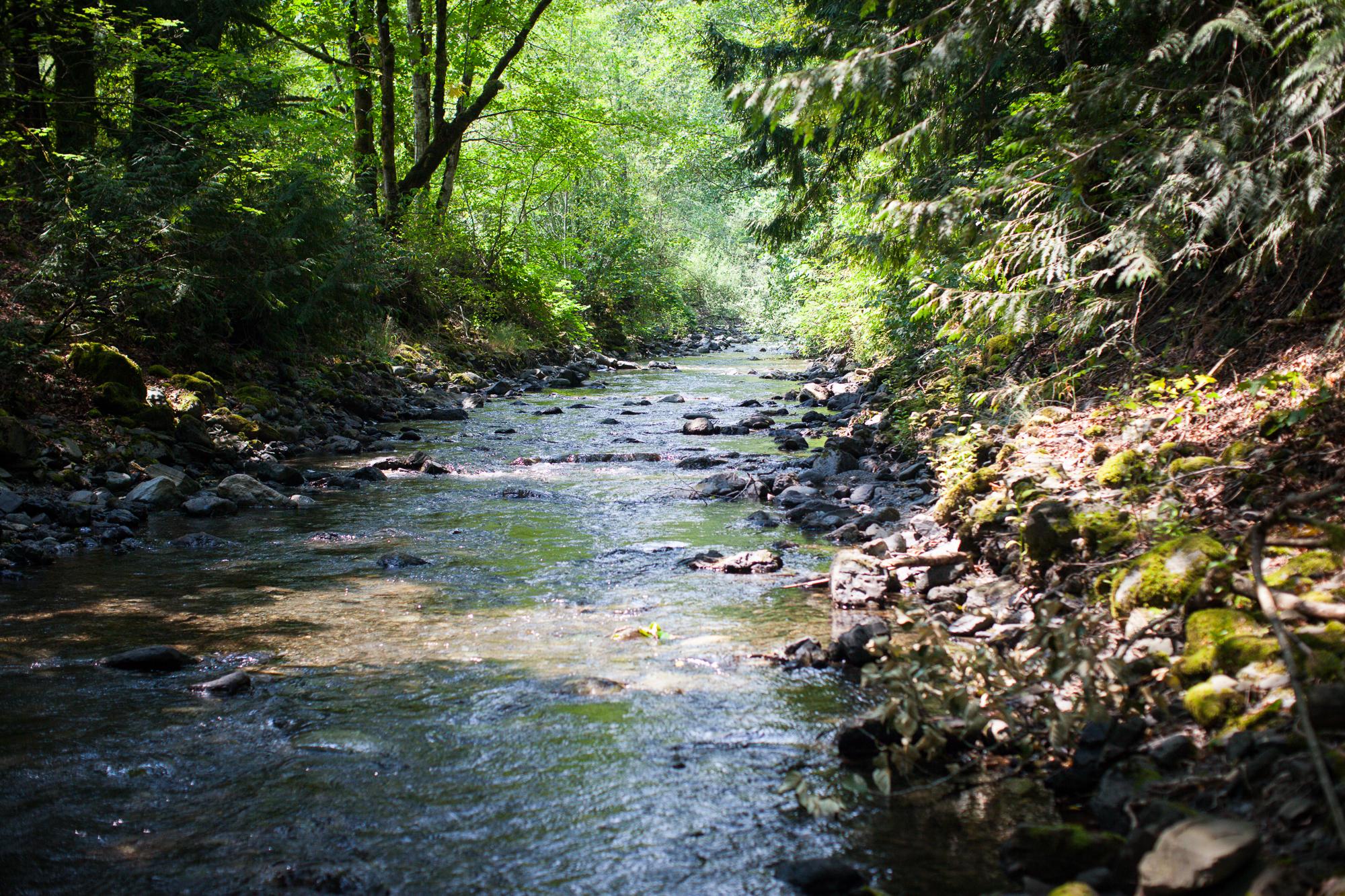 CreeksideMills-4927.jpg