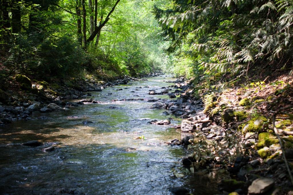 creekside_mills_cultus_lake