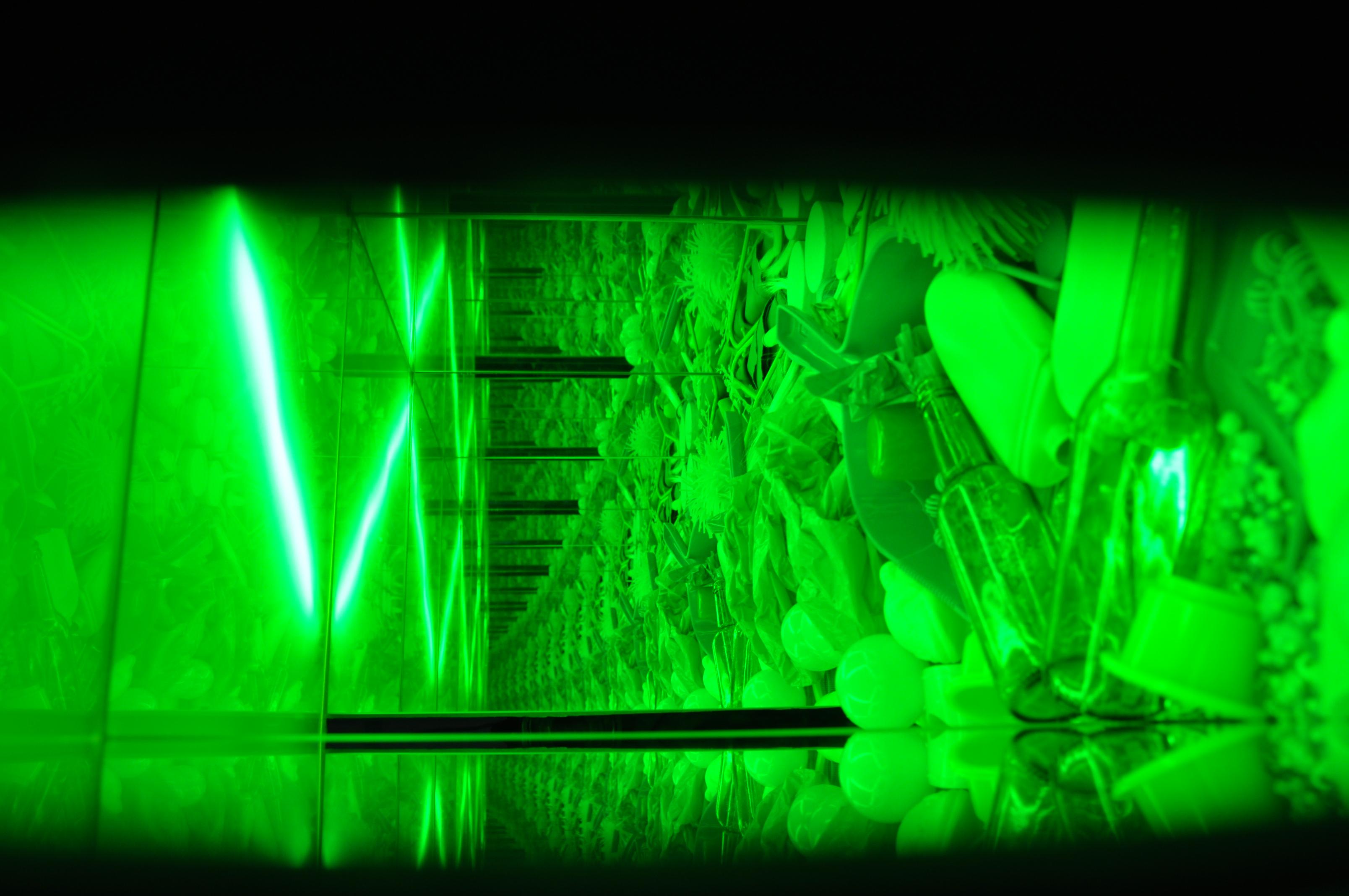 Liz West, Green Chamber (Internal View), Mixed Media Installation, 2011 -1.JPG
