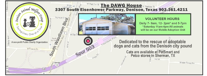 Denison Animal Welfare Group (DAWG)Available Pets