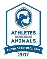 A4A Grant Recipient Logo2_2017-01.jpg