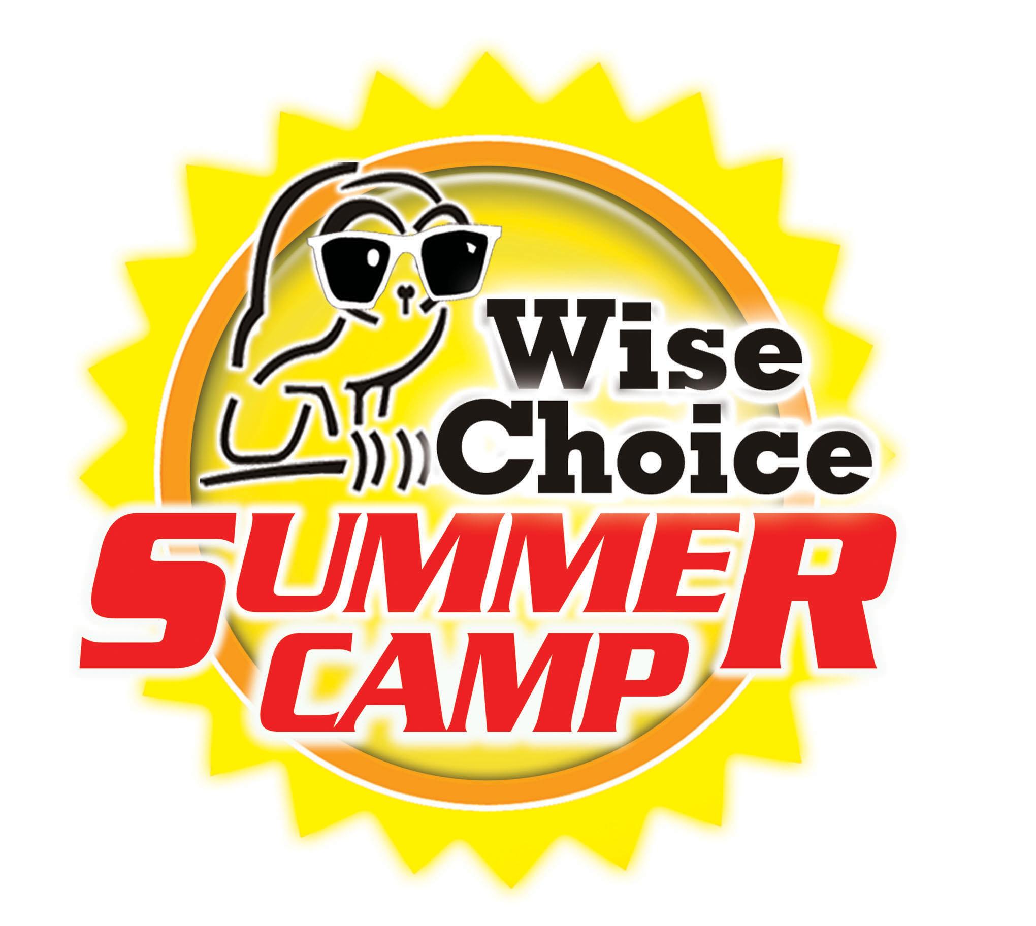 WiseChoiceSummer_logo.jpg