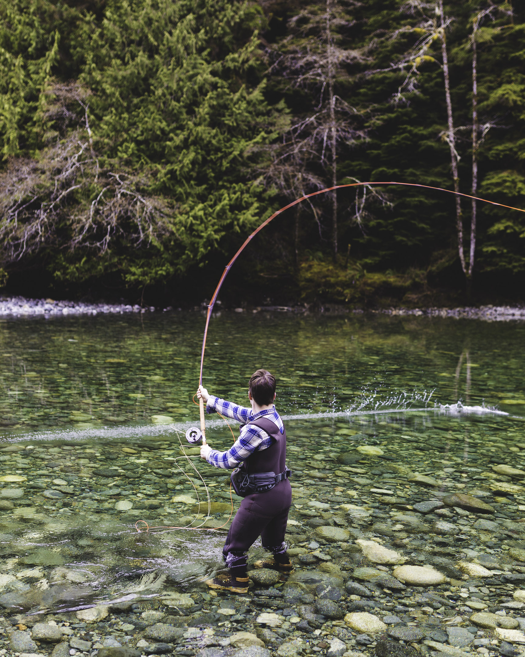 A fly fisherman casting on a shallow clear river in Port Renfrew, BC, Canada