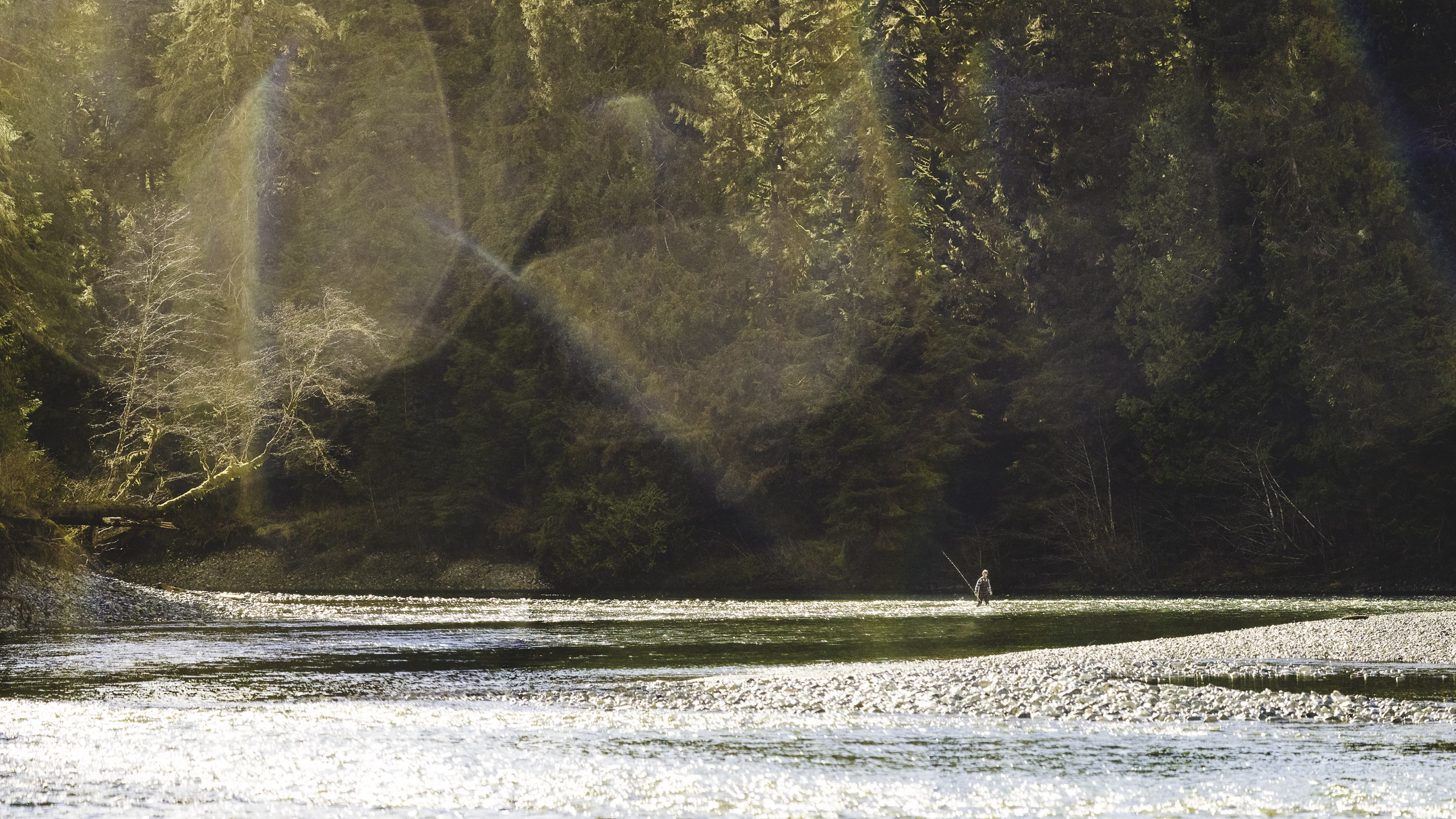 Fisherman walking in sunlight on the Gordon River in Port Renfrew, BC, Canada.