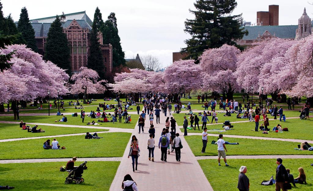 University of Washington, Seattle