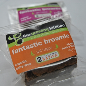Fantastic Brownie 3.jpeg