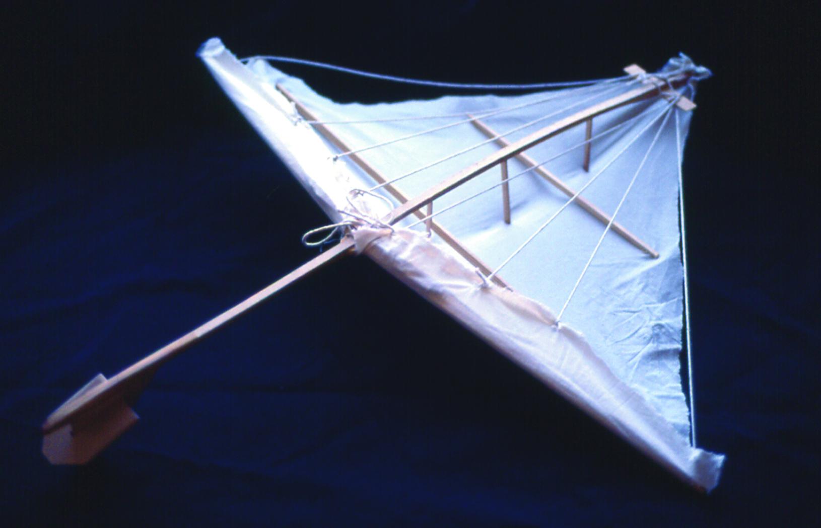 Kite 2007