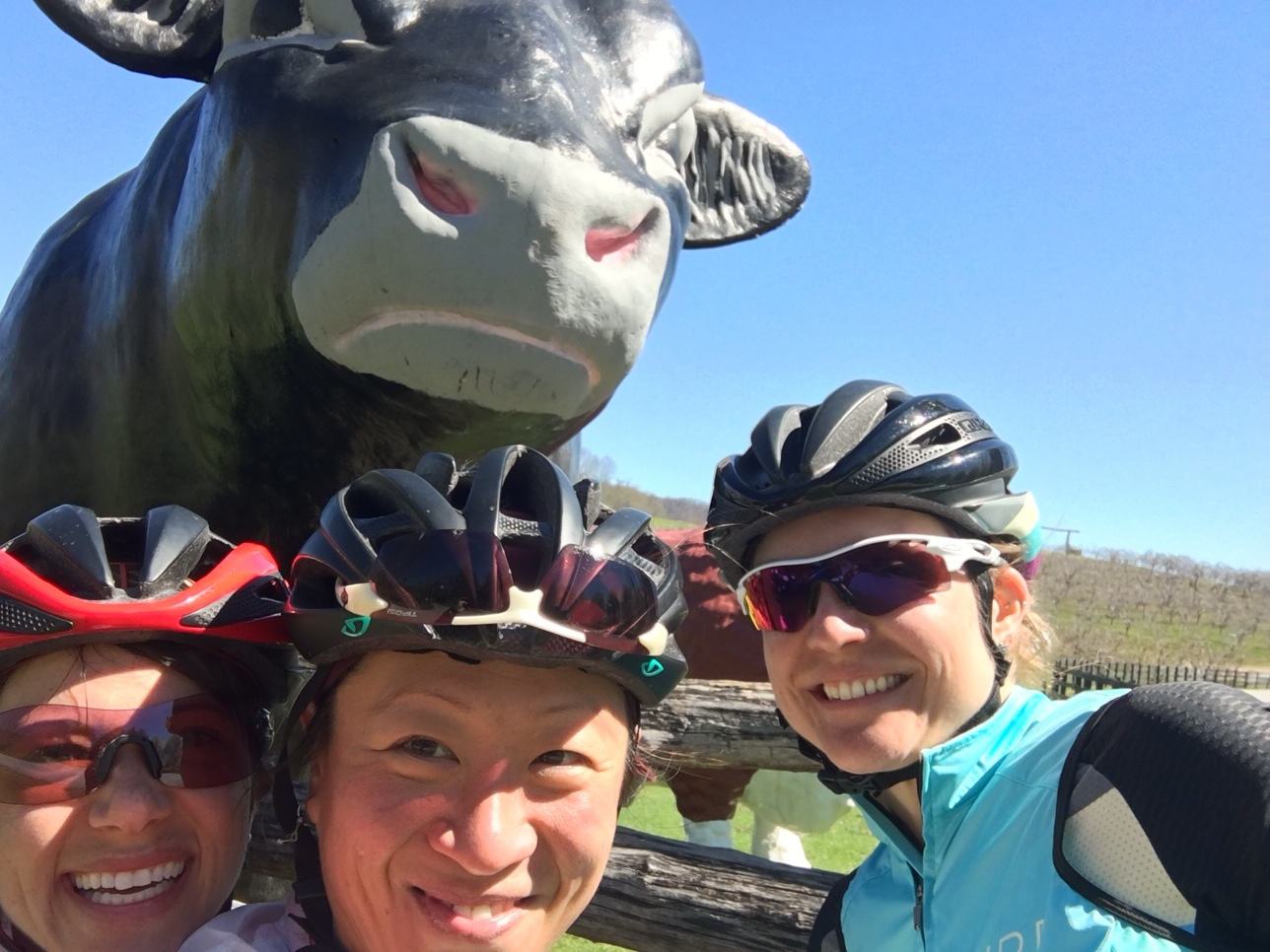 Anina, Jrho, and Sierra Find a Cow