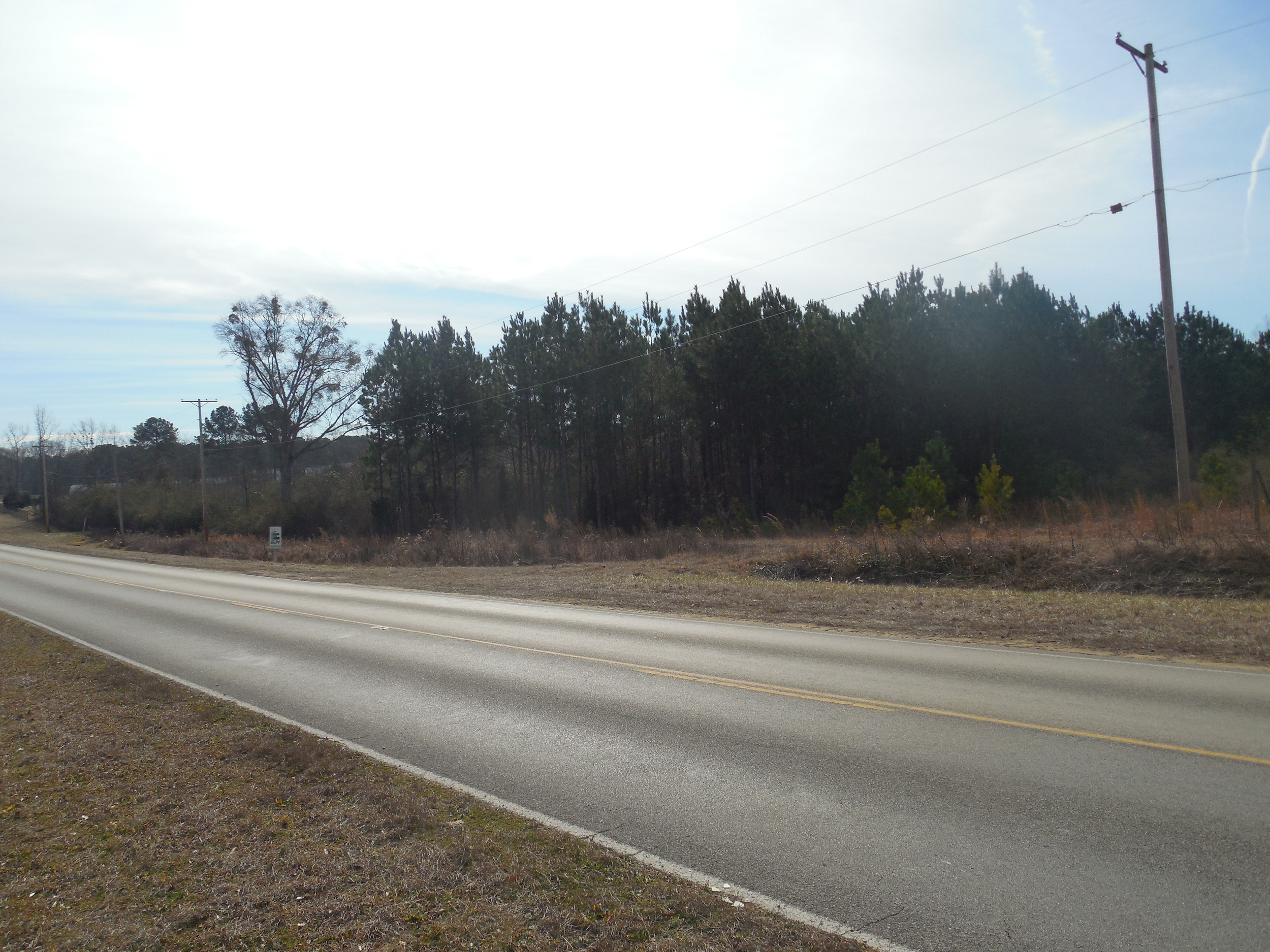 27 Acres - Autumn Ridgde Drive and Hwy 19 Pic 2.JPG