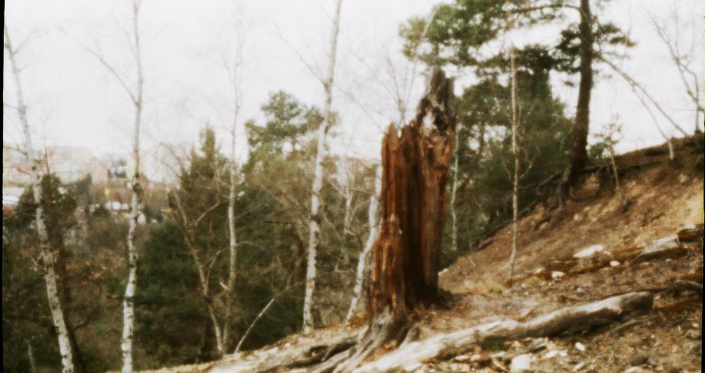 Kyklop image