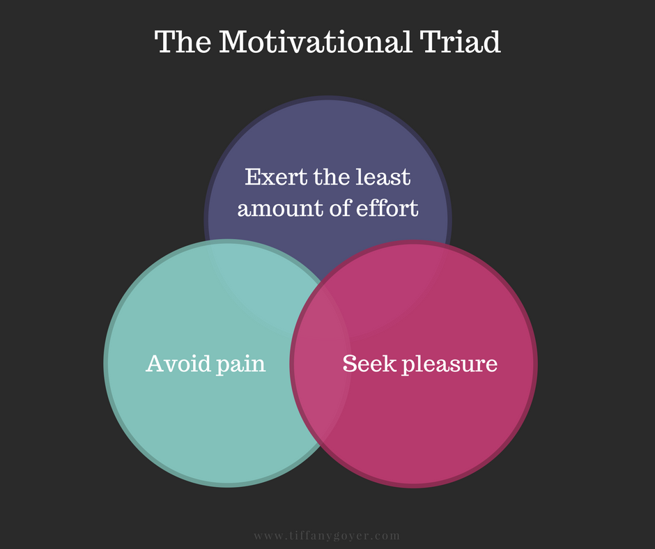The Motivational Triad.png