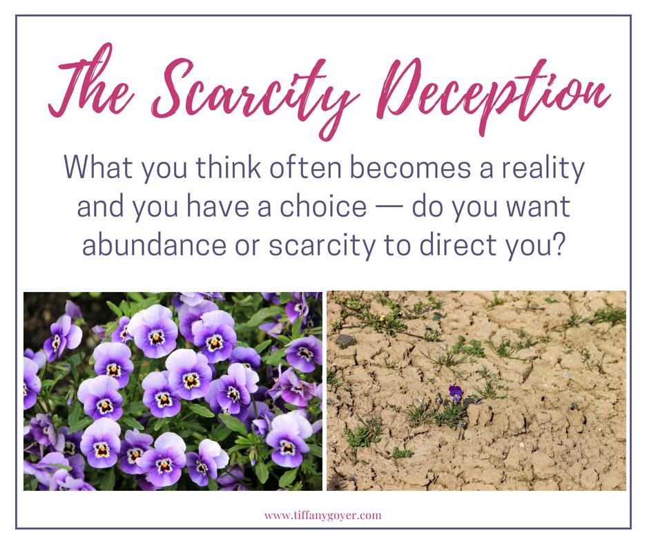 scarity or abundance.jpg