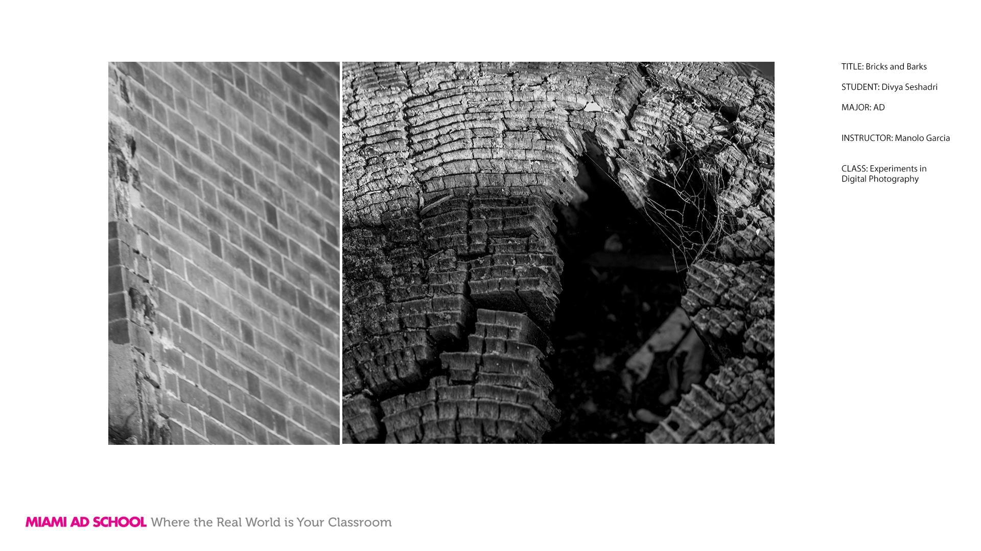 Divya_Bricks_and_Barks.jpg