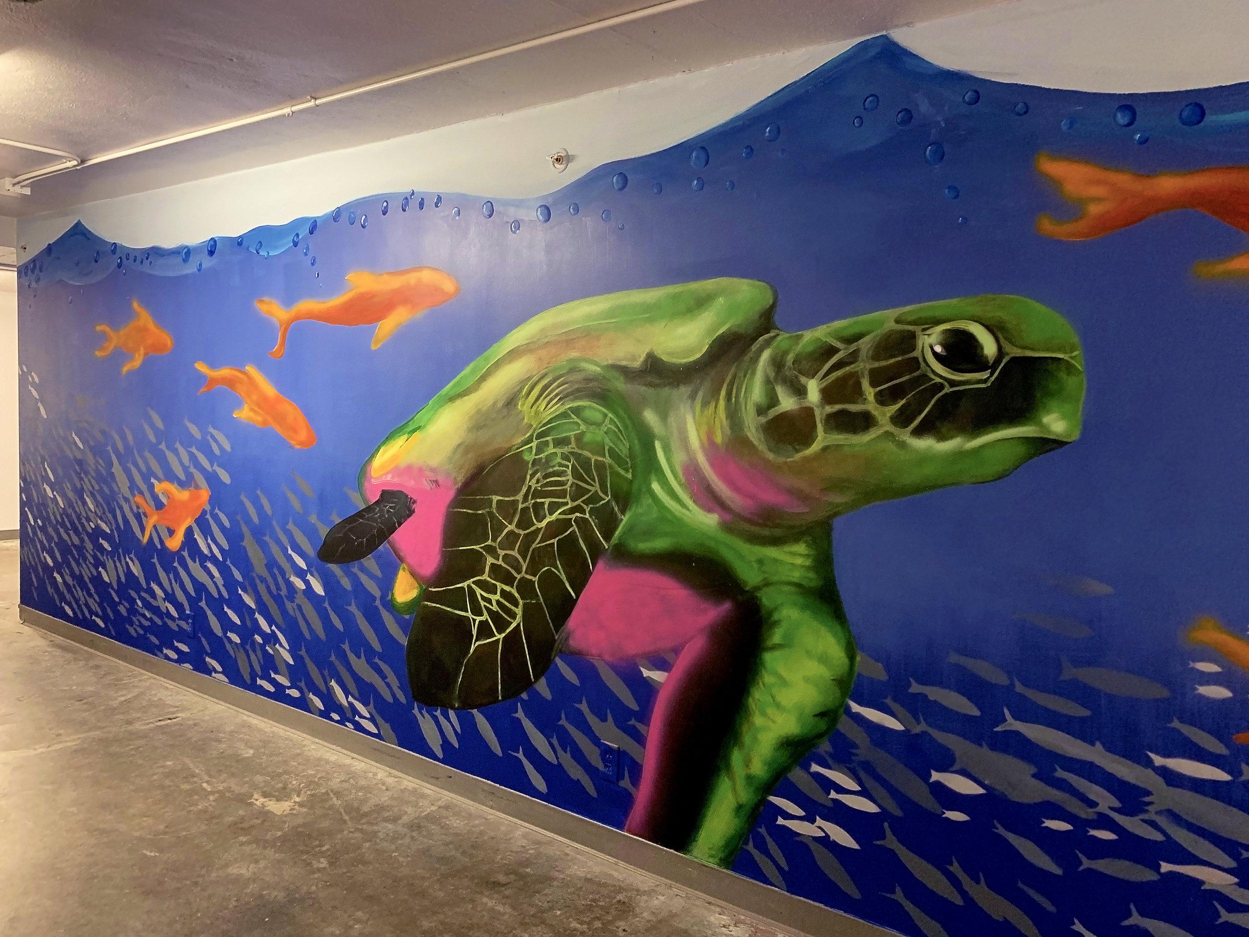 turtlewall.jpg