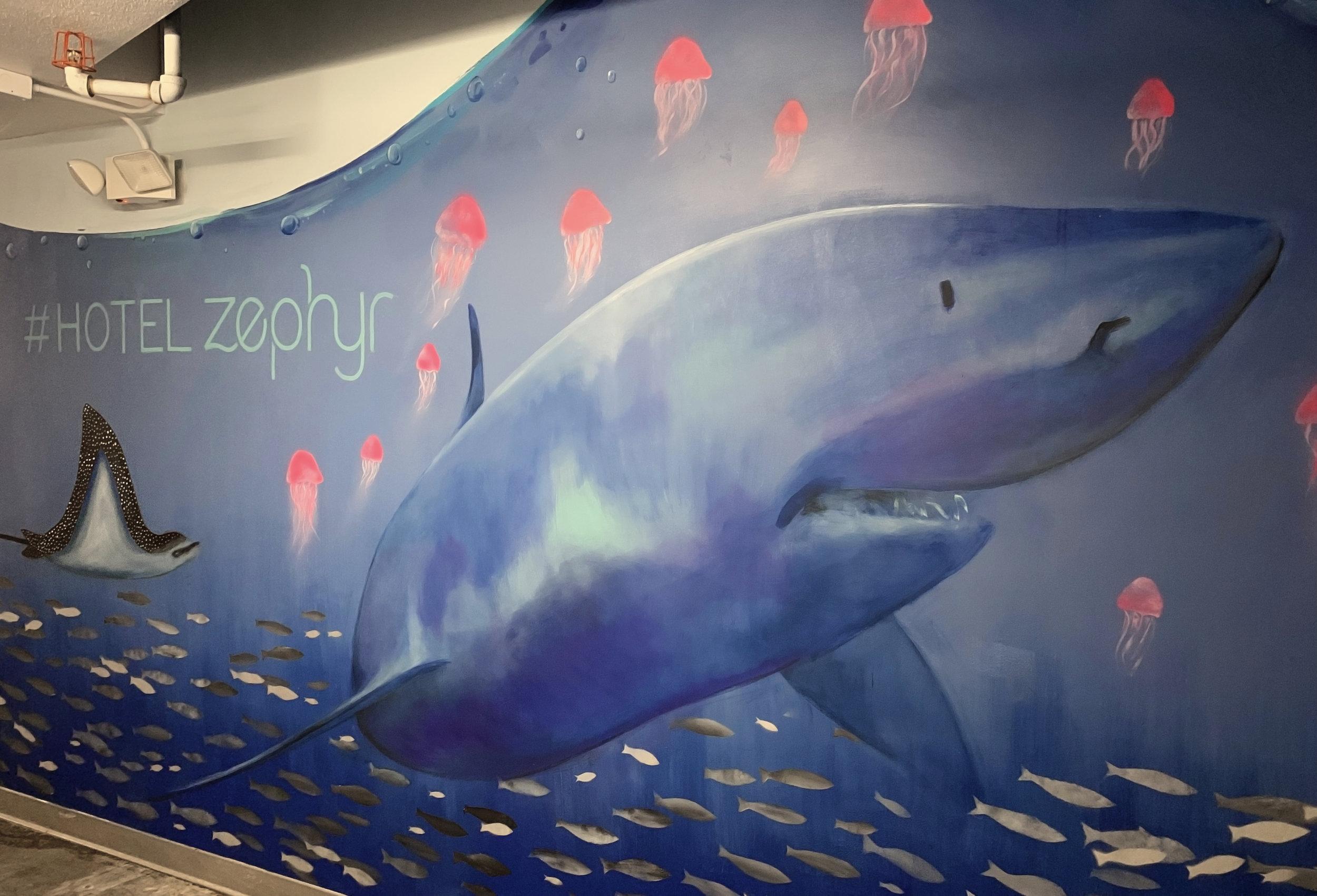 shark #.jpg