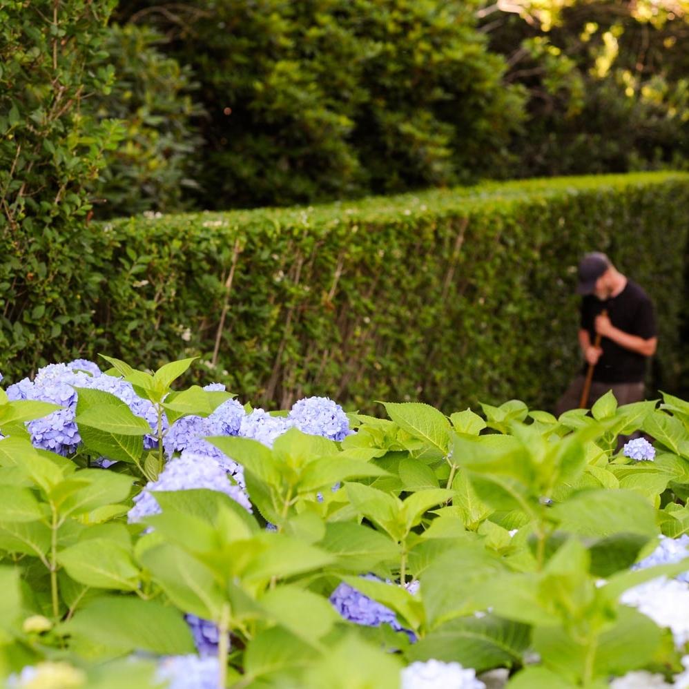 Gardner, Hedge, Landscape Design