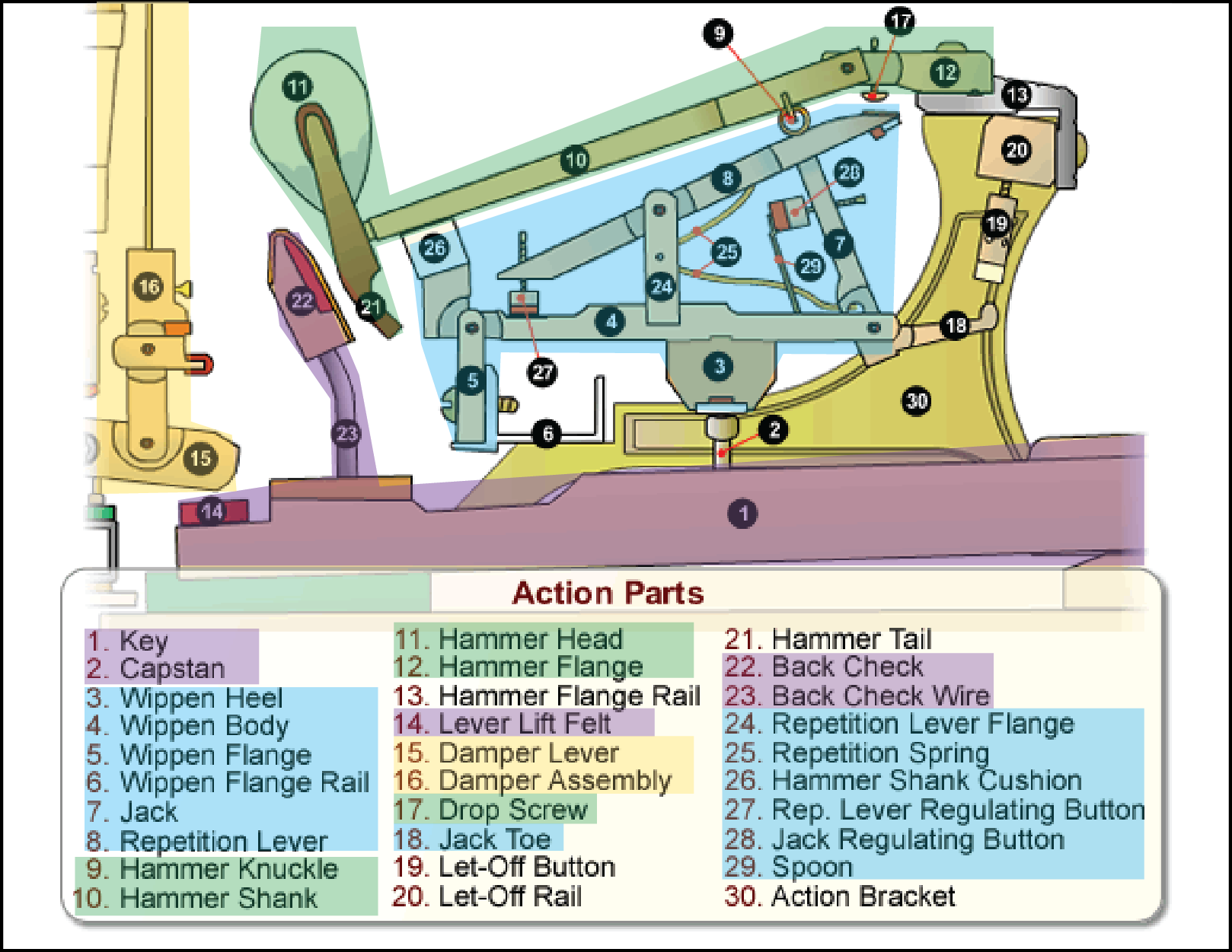 http://www.piano.christophersmit.com/actionDetail.htm (highlighted grouping mine)