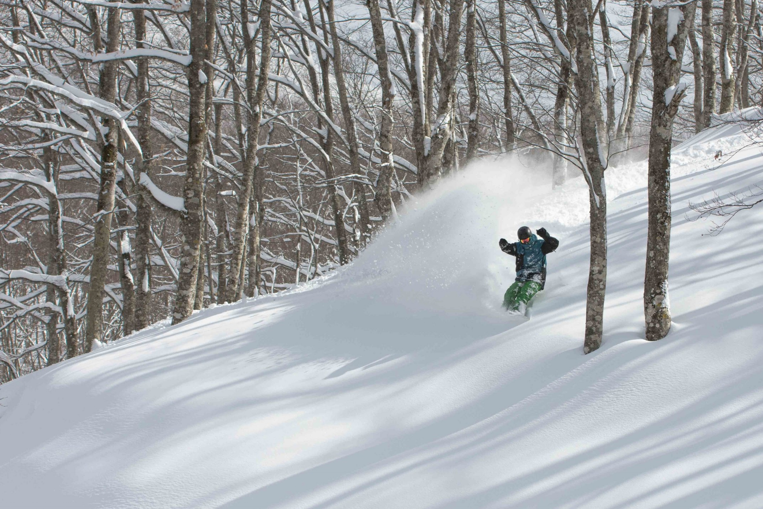 Shot of Ryan Butterfield in Niseko, taken by Finnegen Laver from Powdershots