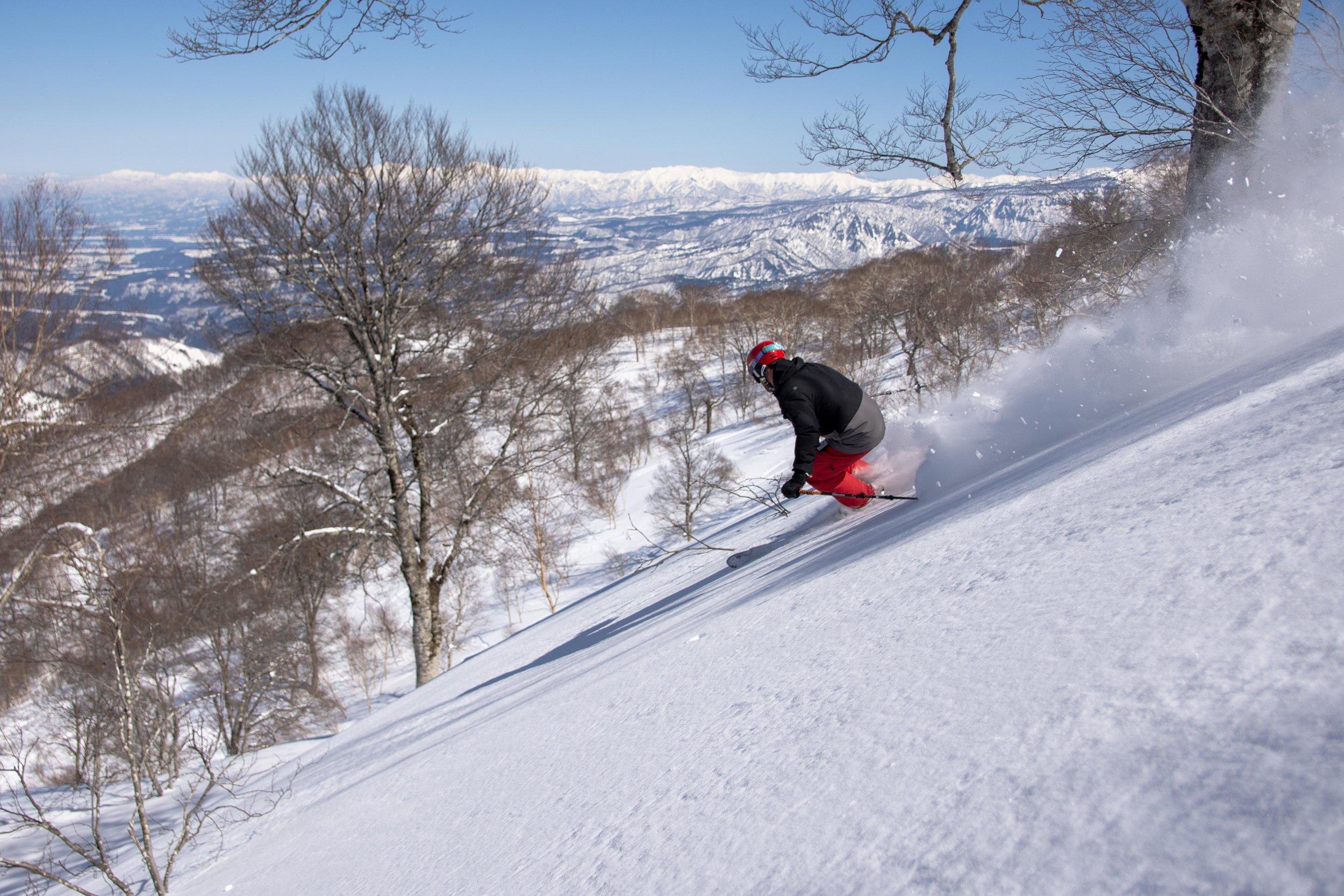 Nozawa Onsen   Downhill with a view