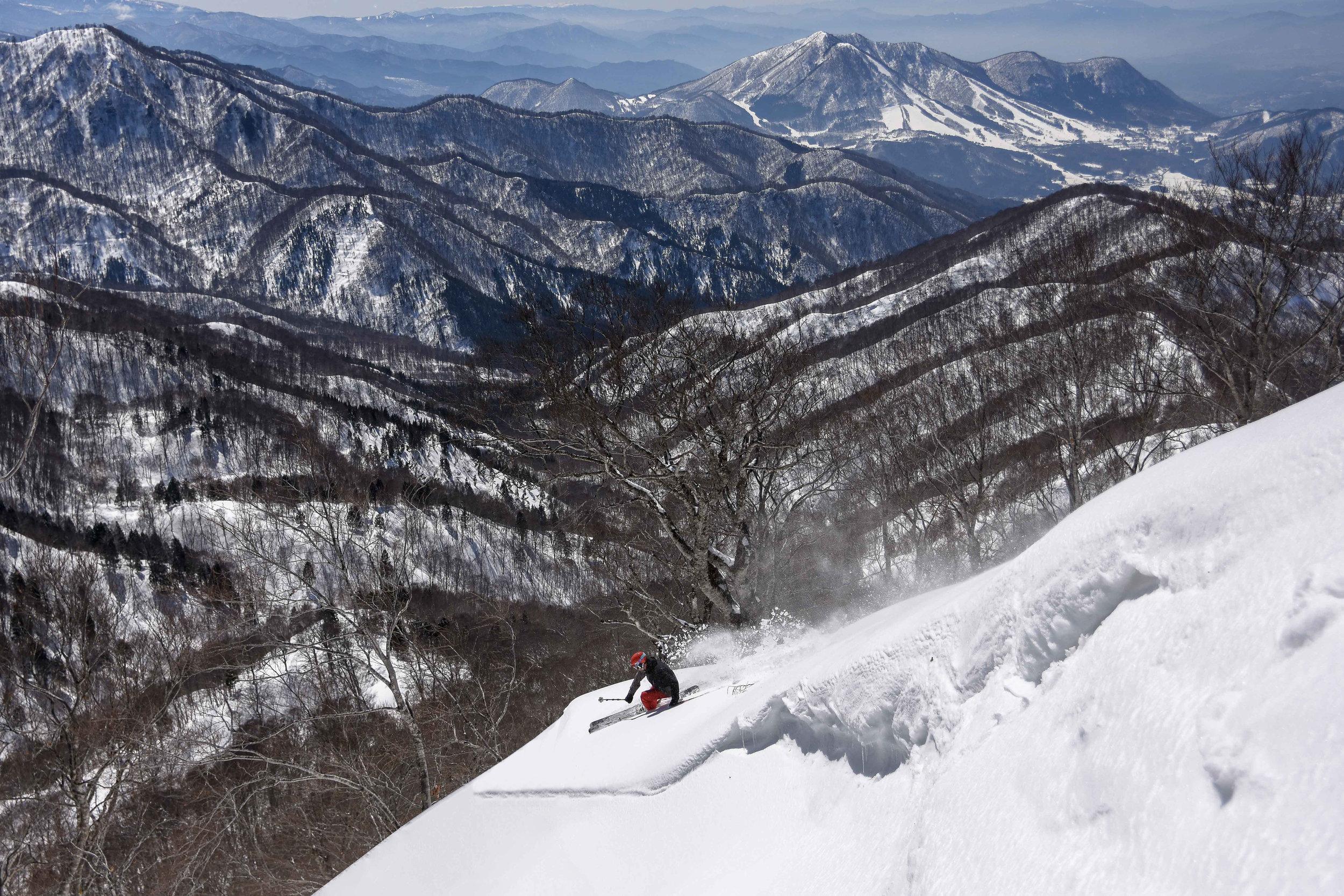 Nozawa Onsen   Fresh lines in Spring