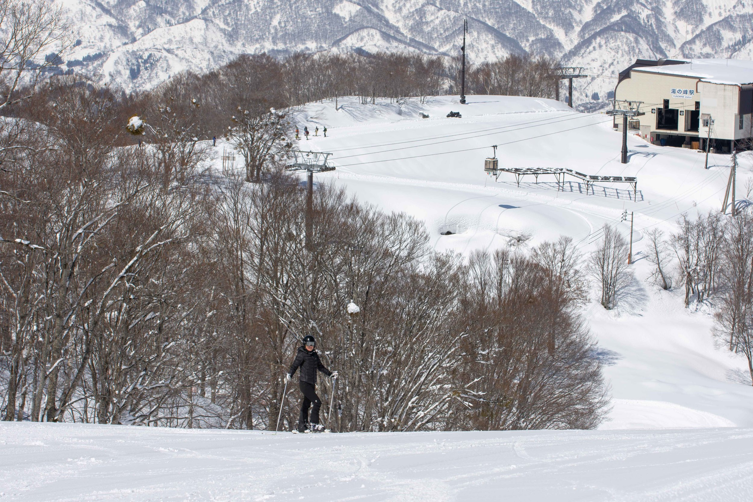 Nozawa Onsen Ski Guiding and Photography Services