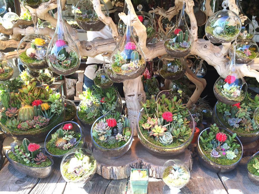At The Grove, I came across this booth of perfect little terrariums. I absolutely love cacti and succulents, so it took everything in me not to buy twelve of these.