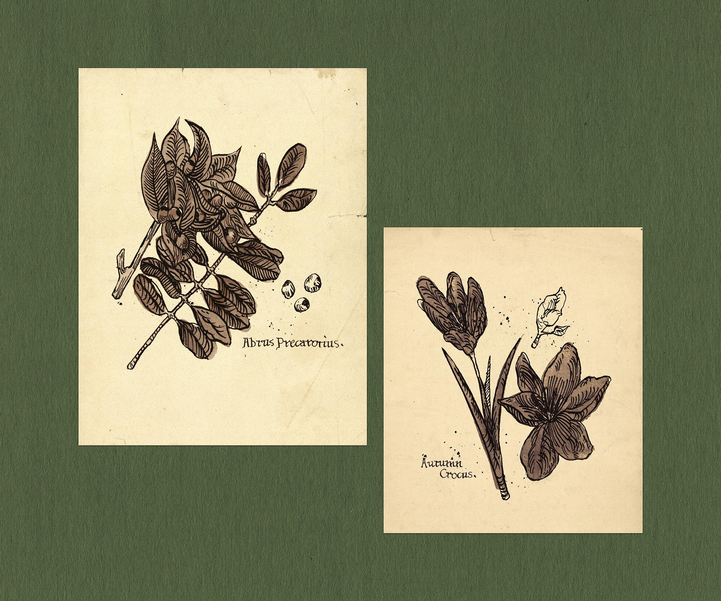 3-winnie-sketches.jpg