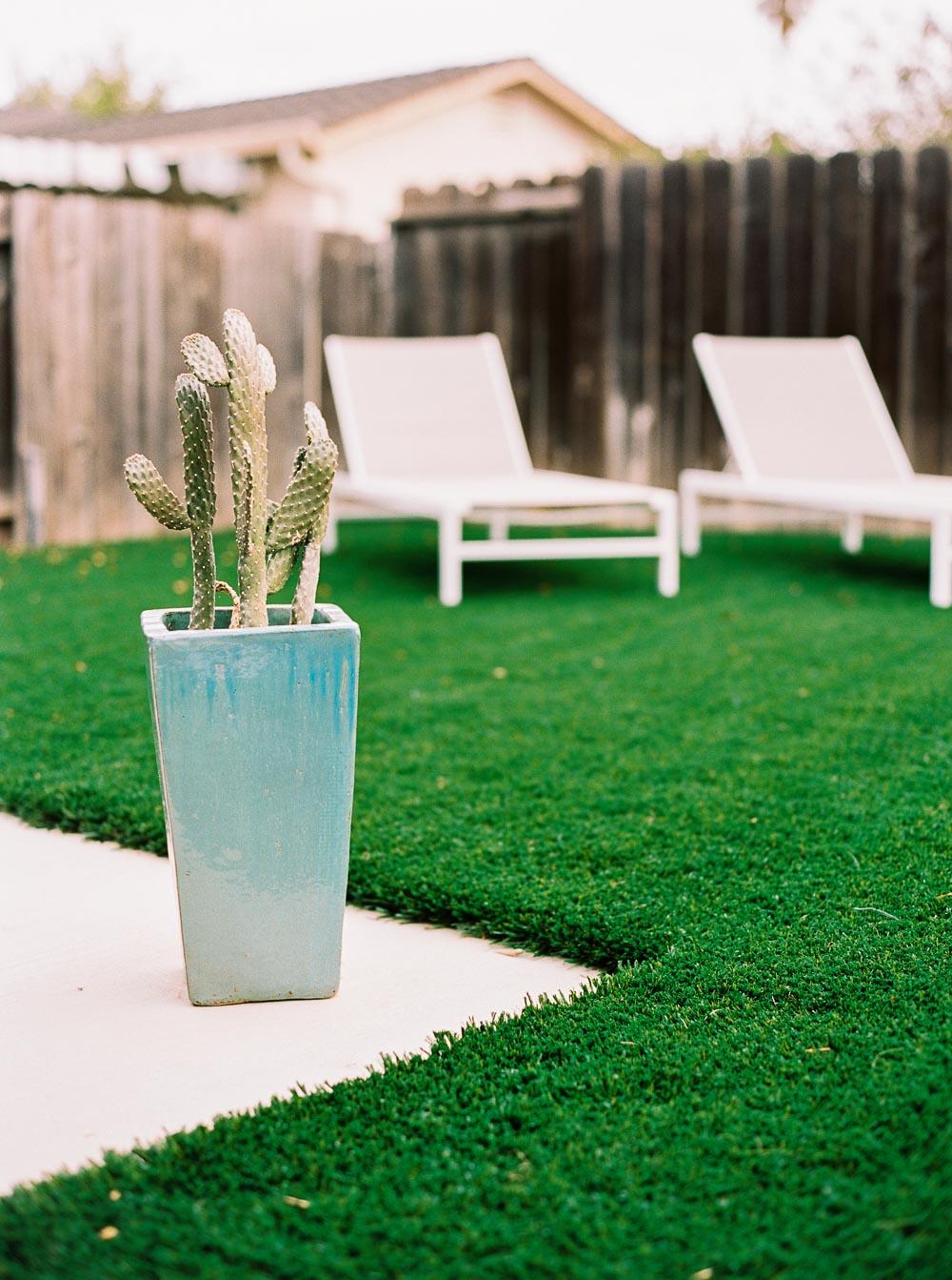 modern backyard-9.jpg